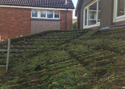 flat roof contractor Glasgow & Lanarkshire