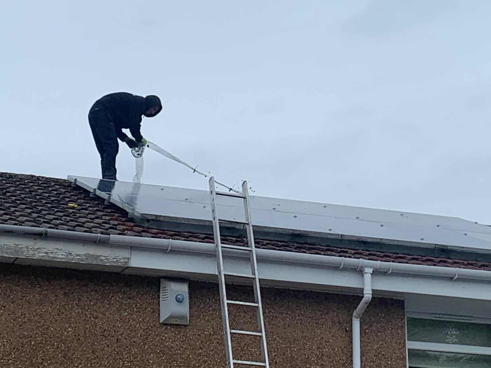 before solar bird proofing in Hamilton, Glasgow