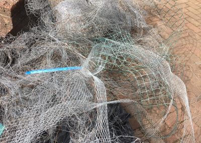 solar panel bird mesh Glasgow