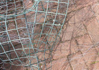 solar panel pigeon wire in Glasgow