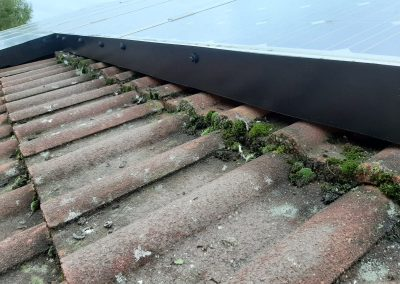 after solar panel pigeon proofing in Edinburgh
