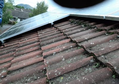 before solar panel pigeon proofing Edinburgh