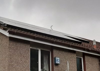 solar panel pigeon protection Edinburgh